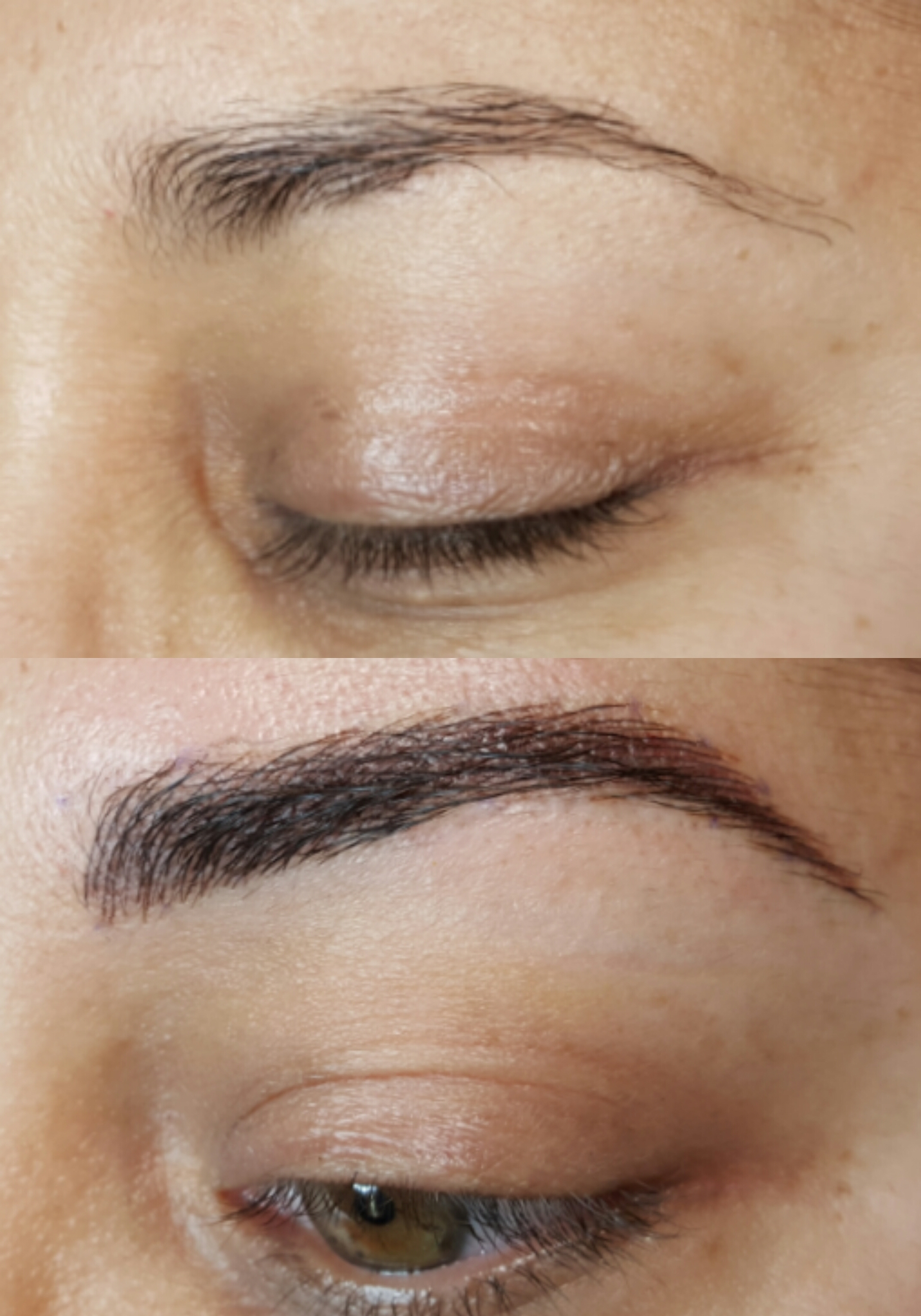Eyebrows Powderpuff Permanent Makeup